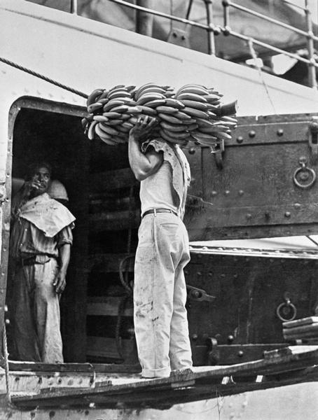 Caricando banane a Veracruz, Messico, 1928 Tina Modotti Archivio Fotografico Cinemazero Images, Fondo Tina Modotti