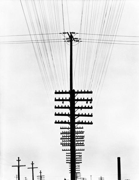 Fili del telegrafo, Messico, circa 1924 Tina Modotti Archivio Fotografico Cinemazero Images, Fondo Tina Modotti